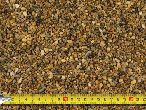 Golden Pea 2-5mm